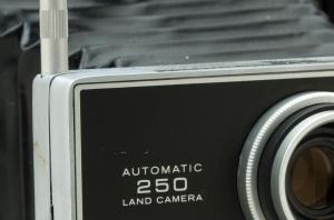 Canon 7D 100% crop